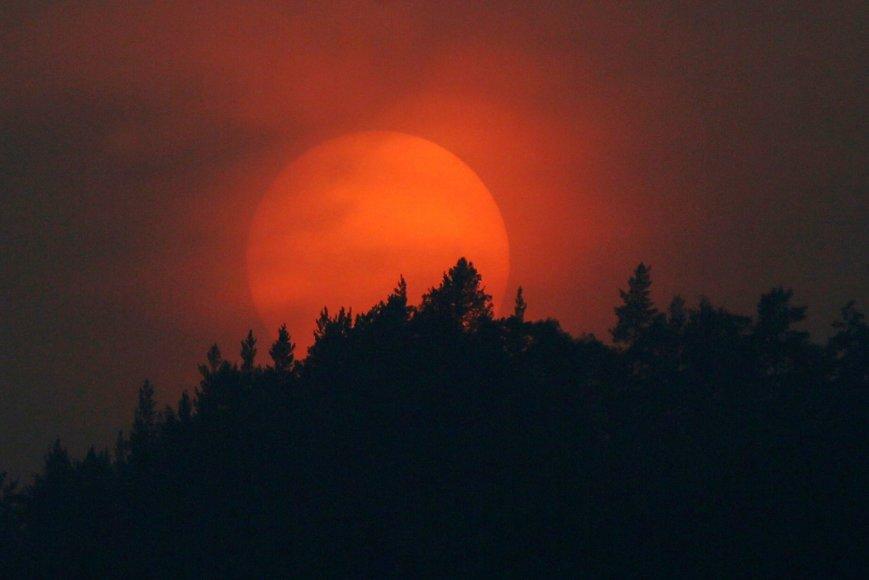 Sibiro taigoje besileidžianti saulė