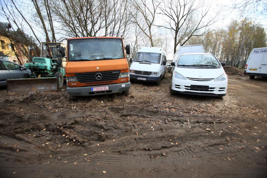 Automobiliai pievoje