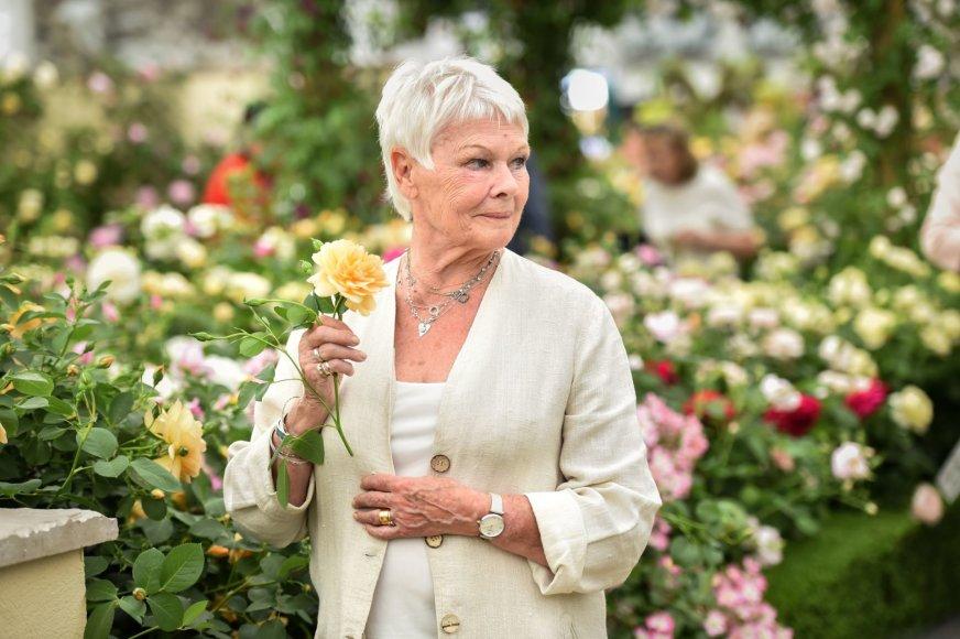 """""""Scanpix"""" nuotr./Judi Dench Čelsio gėlių parodoje"""