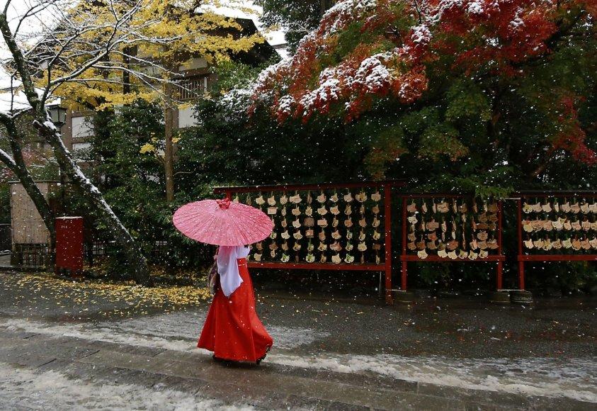 Tokijuje pirmąkart per 54 metus lapkritį iškritęs sniegas sutrikdė eismą