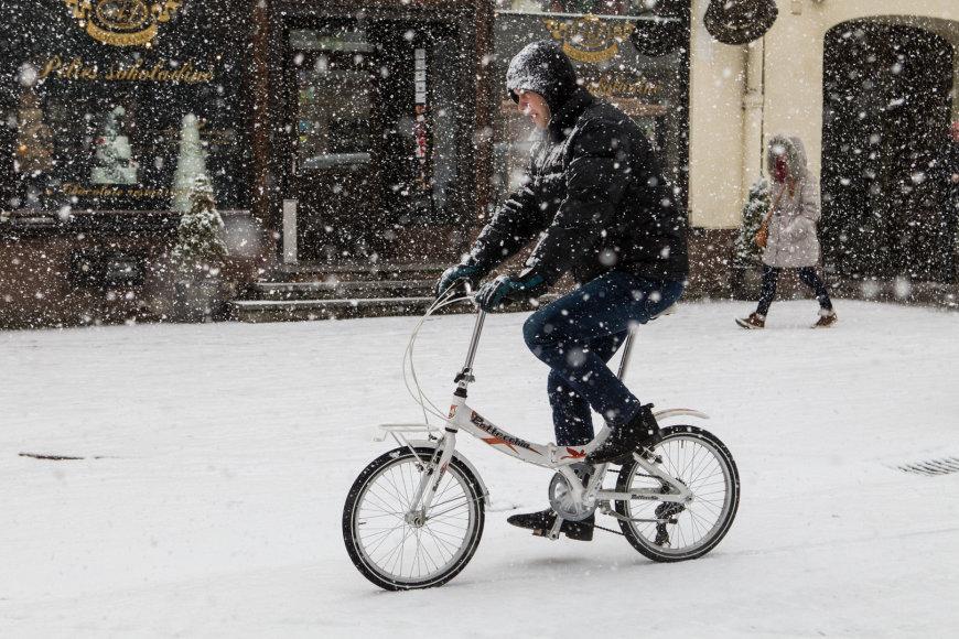 Snygis Vilniuje, 2014-ųjų pavasaris