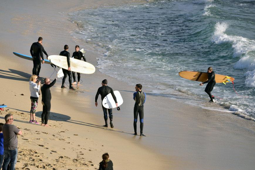 Australijos pakrantėje knibžda ryklių
