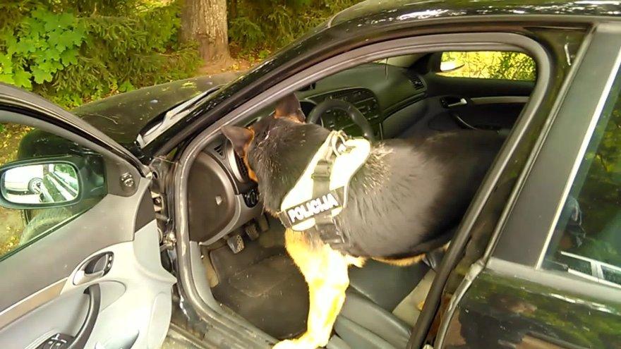 telsiu-apskrities-policijos-tarnybinis-suo-rado-narkotikus-automobilyje