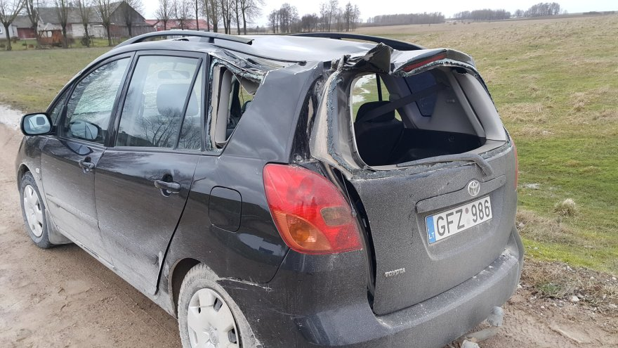 """Medis užvirto ant automobilio """"Toyota"""""""