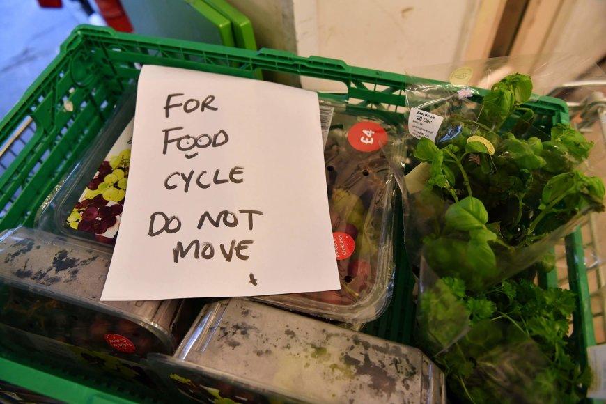 """""""FoodCycle"""" paaukoti produktai"""