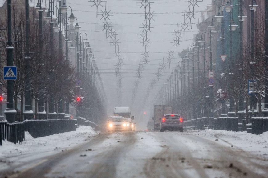 Pūga Vilniuje