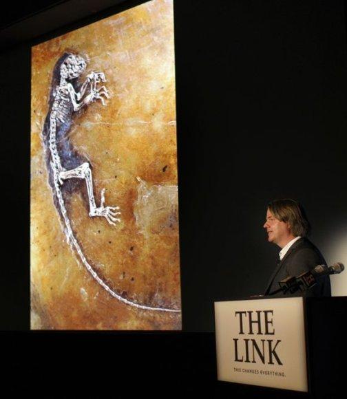 Fosilijos pristatymas Niujorke