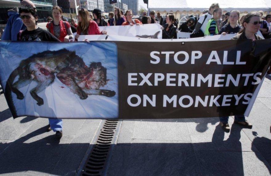 Pasaulyje eksperimentai su gyvūnais sulaukia vis daugiau pasipriešinimo.