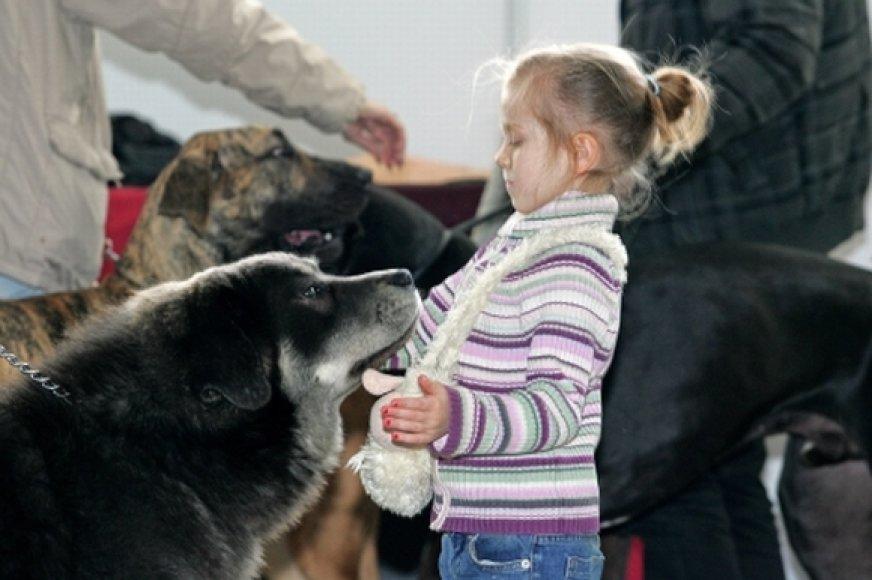 Mergaitė ir šunys