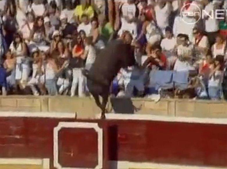 Bulius peršoko apsauginį barjerą.
