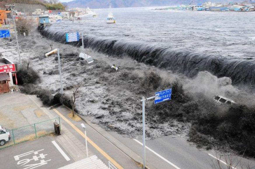 Cunamio banga Mijako mieste (Ivatės prefektūra) veržiasi per ją sulaikyti turėjusią specialią betoninę sieną.