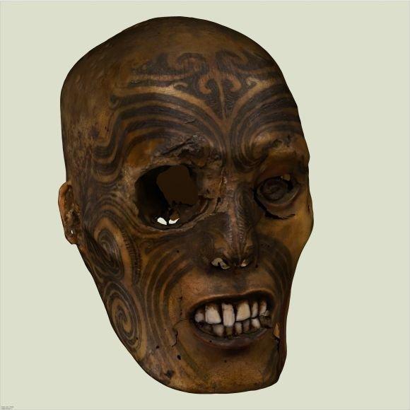 Trimatė maorių kario galvos rekonstrukcija
