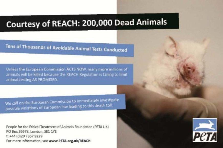 PETA raginimas ištirti įstatymų, reguliuojančių gyvūnų naudojimą bandymams, pažeidimus.
