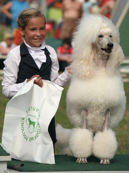 Šunų parodoje