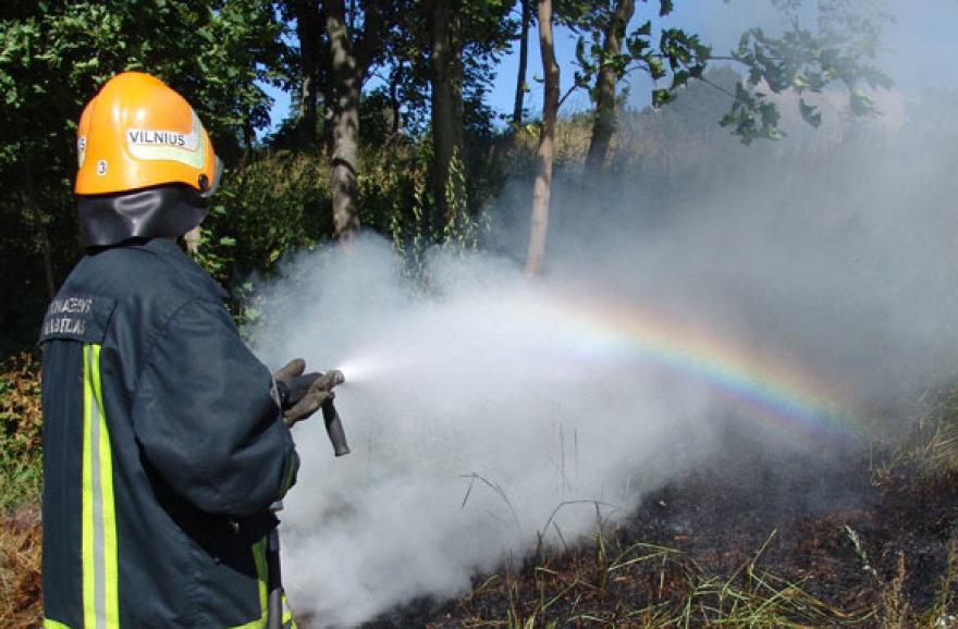 Vilniaus ugniagesys gesina degančią žolę