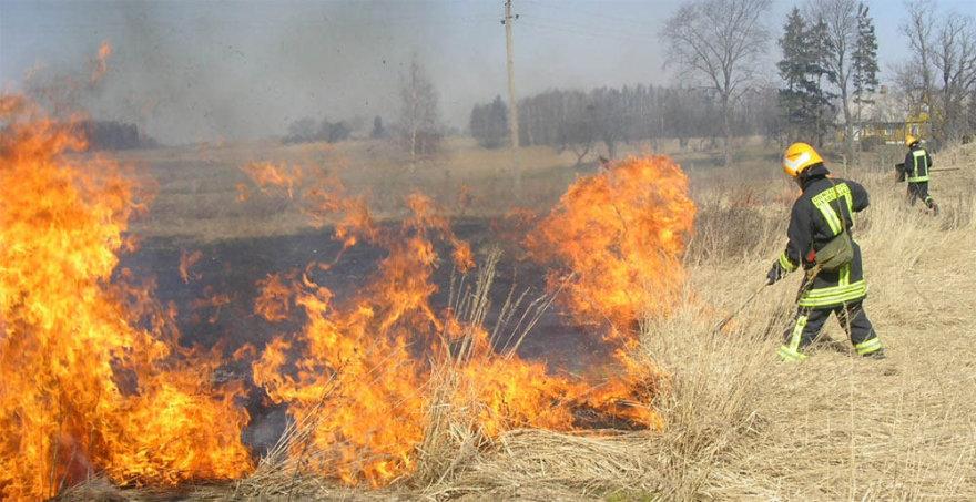 Ugniagesiai gesina degančią žolę