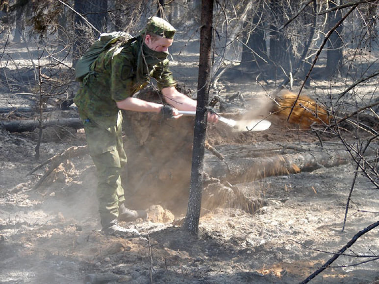 Kariai padeda gesinti mišką