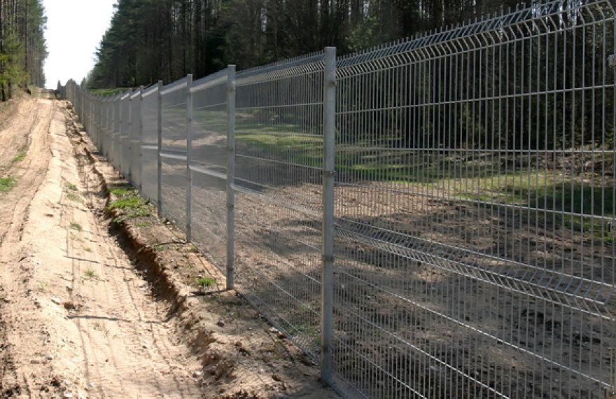 Valstybės siena