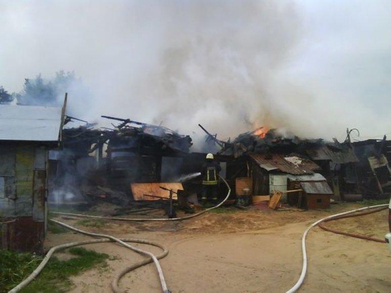 Įtariama, kad didžiulį gaisrą Vaidoto gatvėje sukėlė neatsargiai su ugmini žaidę vaikai.