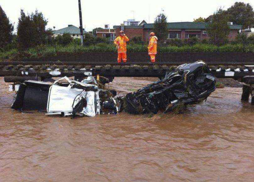 Potvynis Australijoje naikina ne tik žmonių turtą.