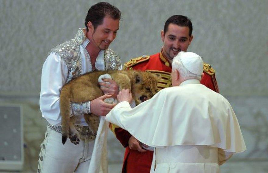 Popiežius glosto liūtuką.