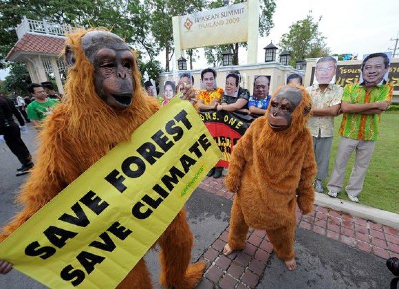 """""""Greenpeace"""" aktyvistų demonstracija"""