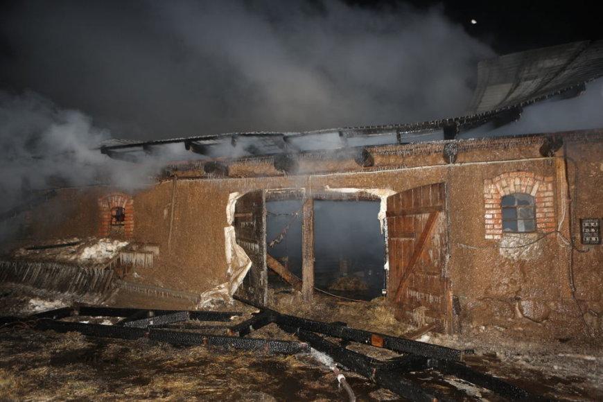 Gaisras Tauragės rajone pražudė 17 galvijų.