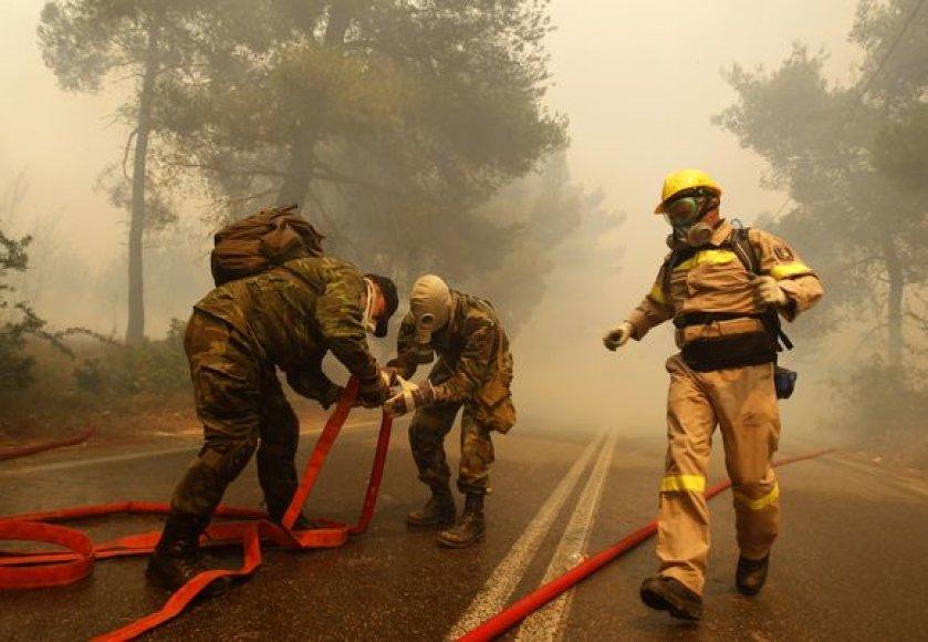 Su ugnimi kovoja daugybė ugniagesių.