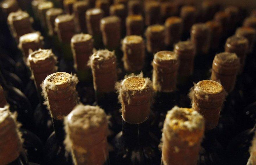 Moldaviški vynai Cricovos rūsiuose