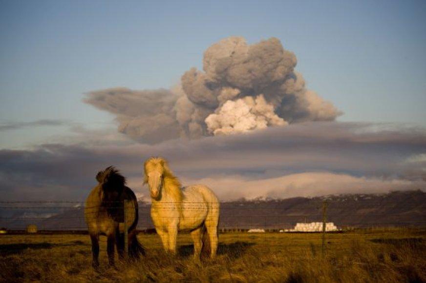 Ugnikalnio pelenų kelionė