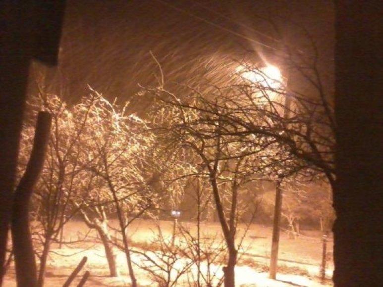 Skaitytojų nuotraukos: sniegas Kelmės rajone