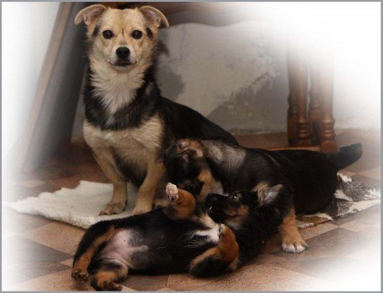 Kalytė Milė su vaikiukais