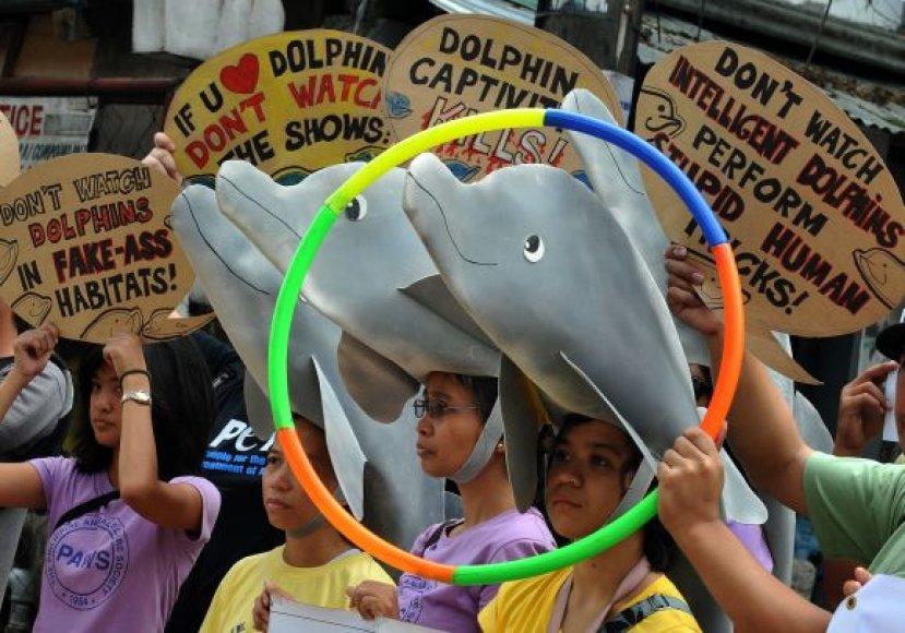 Gyvūnų teisių gynėjų protesto akcija Maniloje, Filipinuose