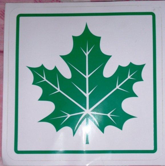 Žalias klevo lapas