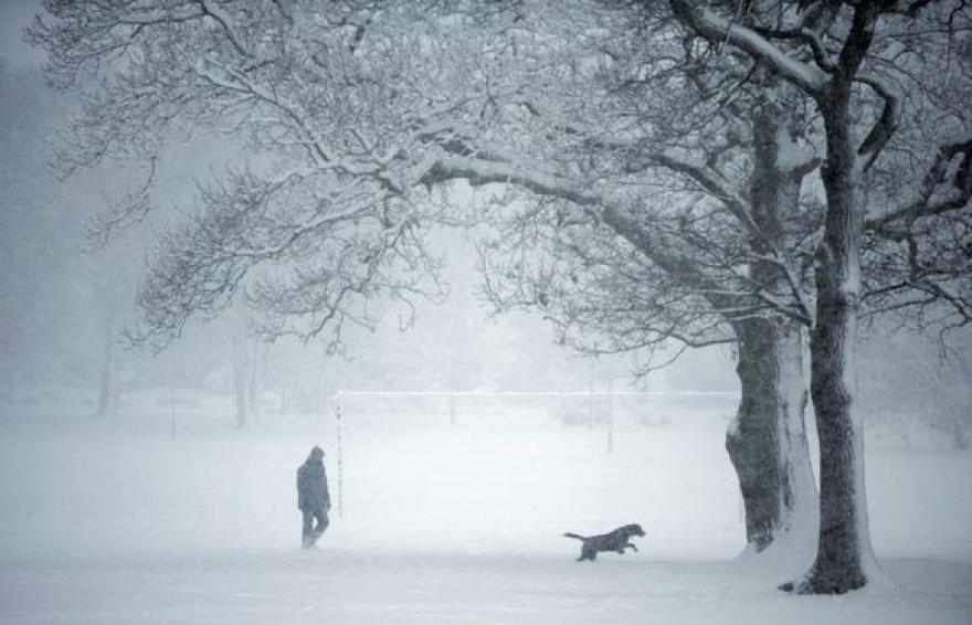 Sniegas Didžiojoje Britanijoje
