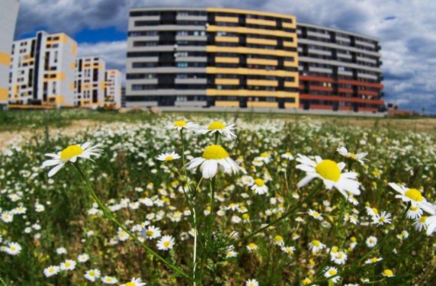 Ekonomikos lėtėjimas ir toliau mažina dalies būstų kainas.