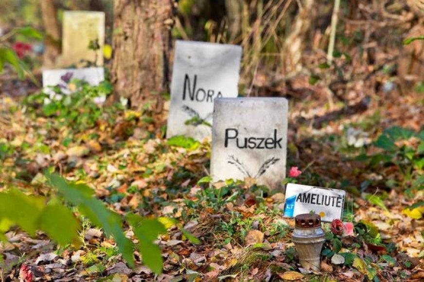 Nelegalias gyvūnų kapines žmonės nusiteikę ginti nuo buldozerių.