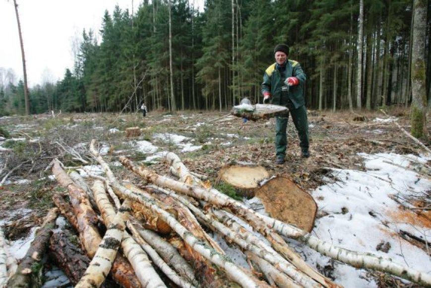 Klaipėdos rajono gyventojai siekia, kad Šernų ir Baičių miškai būtų rekreacinės paskirties, tik tuomet jie nebūtų kertami.