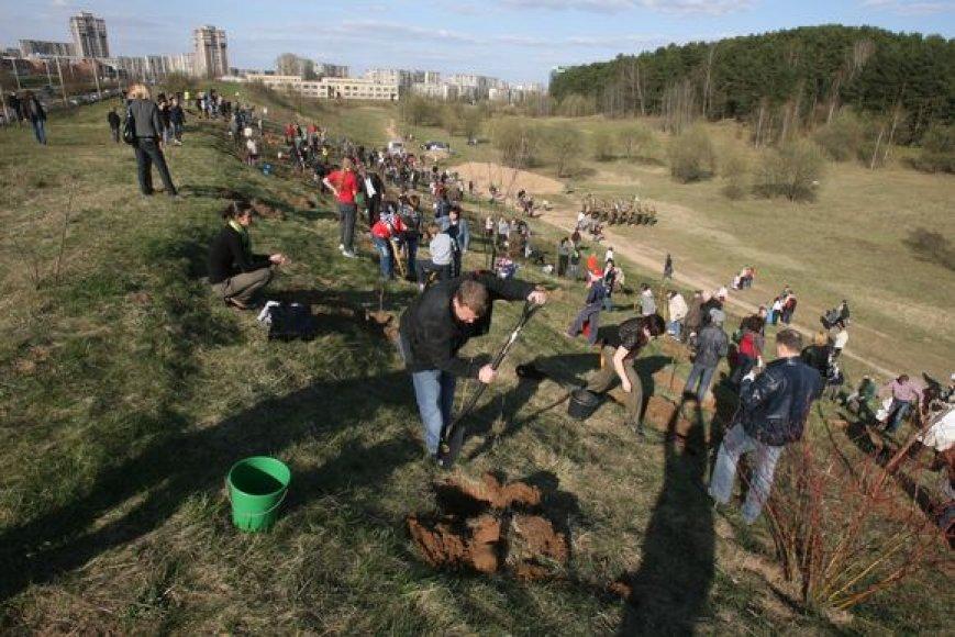"""""""Saulės"""" mokyklos bendruomenė vakar pasodino apie 200 sodinukų, kurie įsilies į Lūžių parką."""