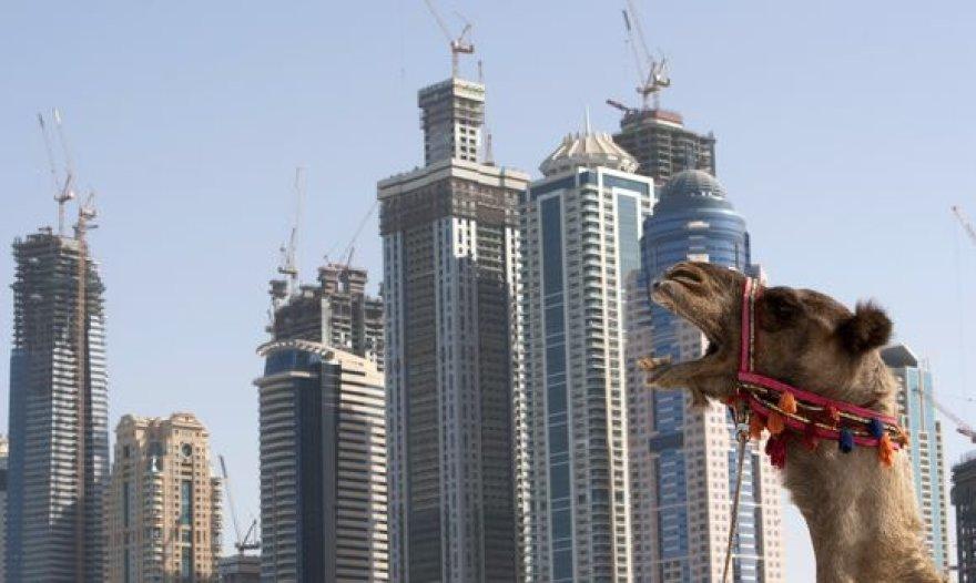 Finansinė krizė Dubajuje