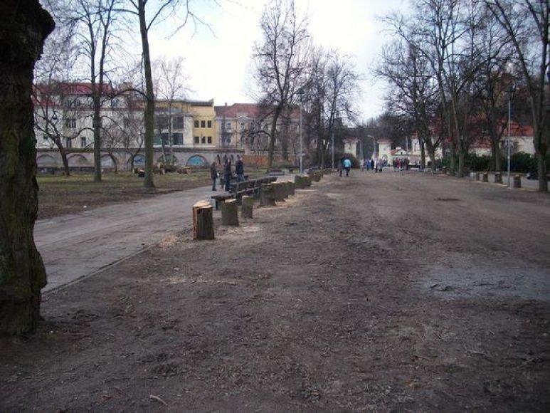 Taip dabar atrodo Sereikiškių parkas