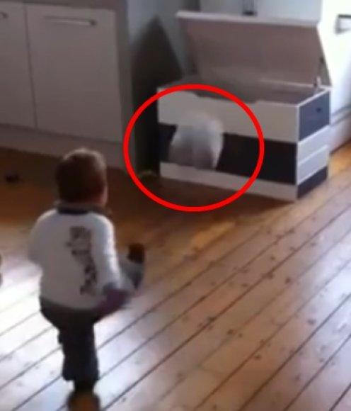 Jaunasis olandas Baeris neklysdamas įspiria kamuolius į atidarytą dėžę