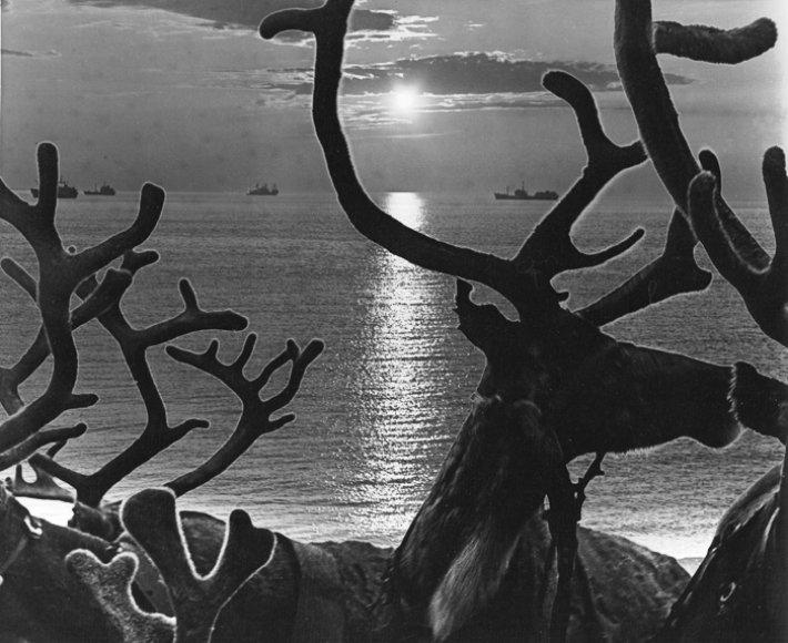 """""""Prie Karos jūros"""". Navigacija, 1985 m."""