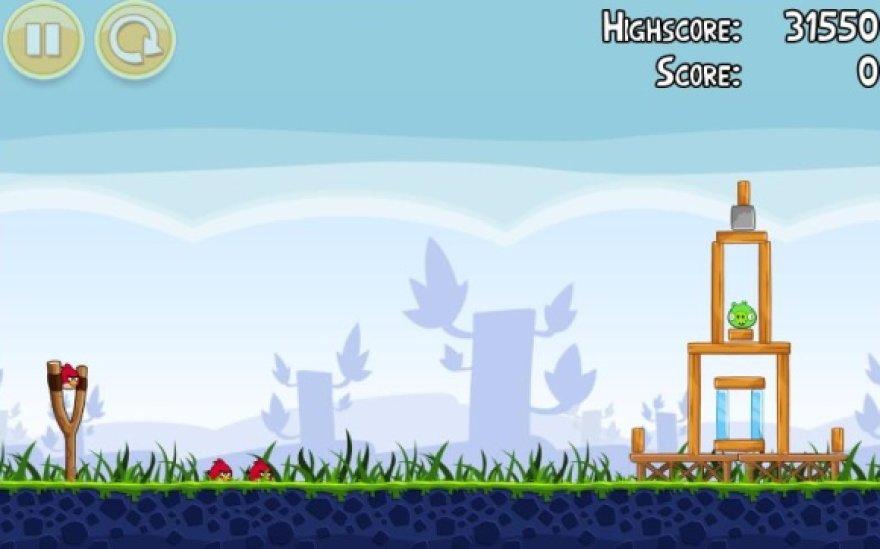 """""""Angry birds"""" žaidimo kadras"""