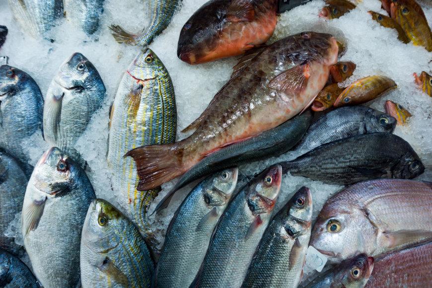 Vida Press nuotr./Žuvis