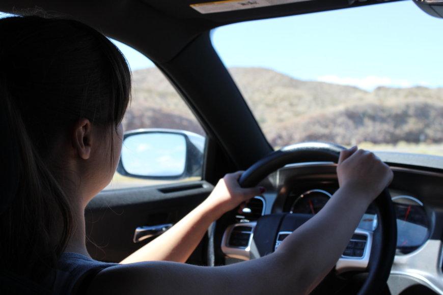 """""""T&G"""" nuotr./ Važiuojant link Mirties slėnio nacionalinio parko kelias veda per dykvietes – aplink tik dykynės ir pilkos uolienos"""
