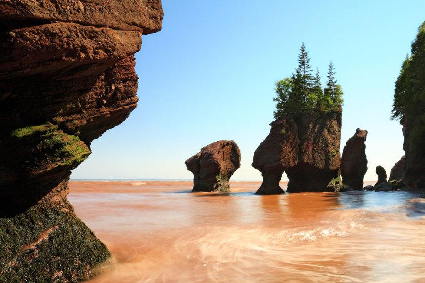 Shutterstock.com/Fandžio įlanka