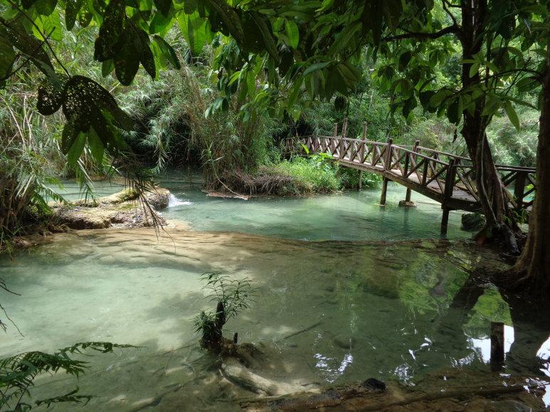 Gabijos Lebednykaitės nuotr./Laosas