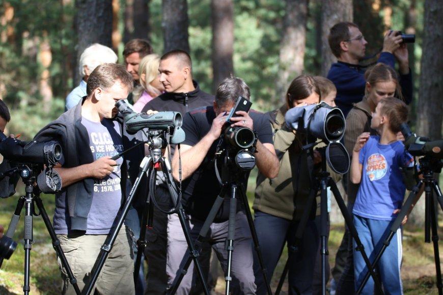 Mariaus Karlono nuotr./paukščių stebėjimas..
