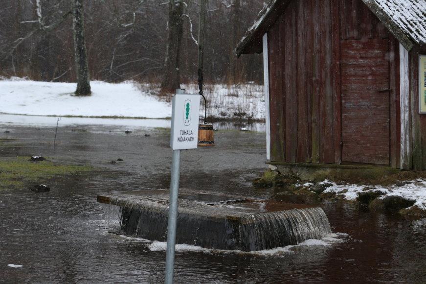 Jaanus Lensment/Postimees.ee nuotr./Raganų šulinys prieš kelerius metus paskelbtas Estijos stebuklu